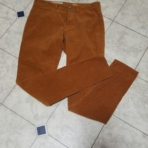 Pilcro and the Letterpress pants size 27